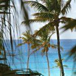 Bermuda: Day 1 (Part 2)