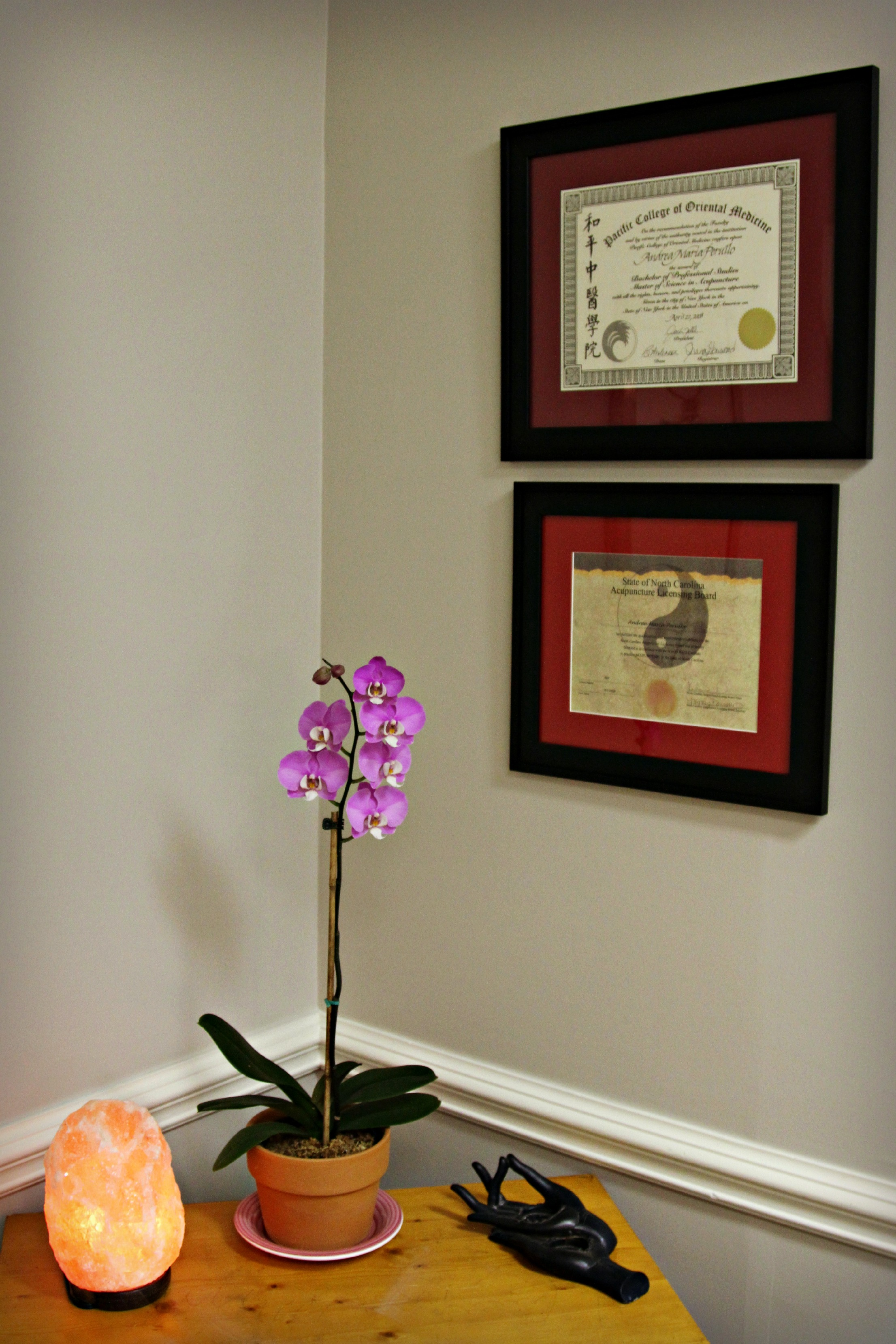 The Healing Hands Acupuncture and Herbal Clinic