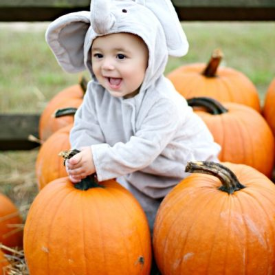 Pottery Barn Kids Elephant Costume