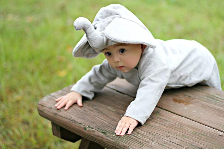 Pottery Barn Kids Elephant Costume