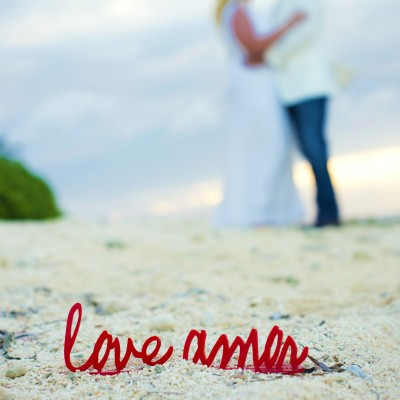 Love and Amor