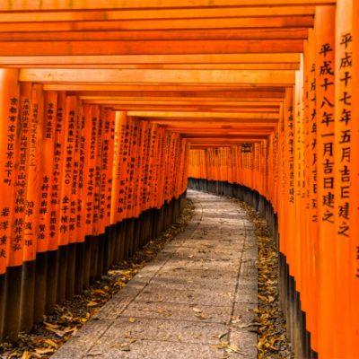 Epic Ancient Shrine in Kyoto Fushimi Inari Shrine
