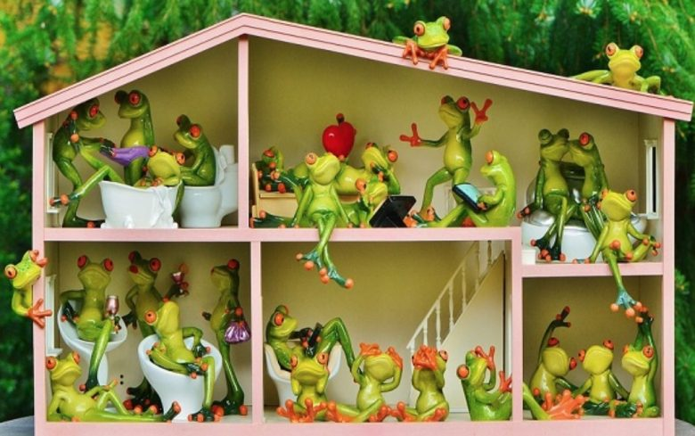 Frog House