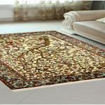 How an Area Rug will complete your first home purchase?