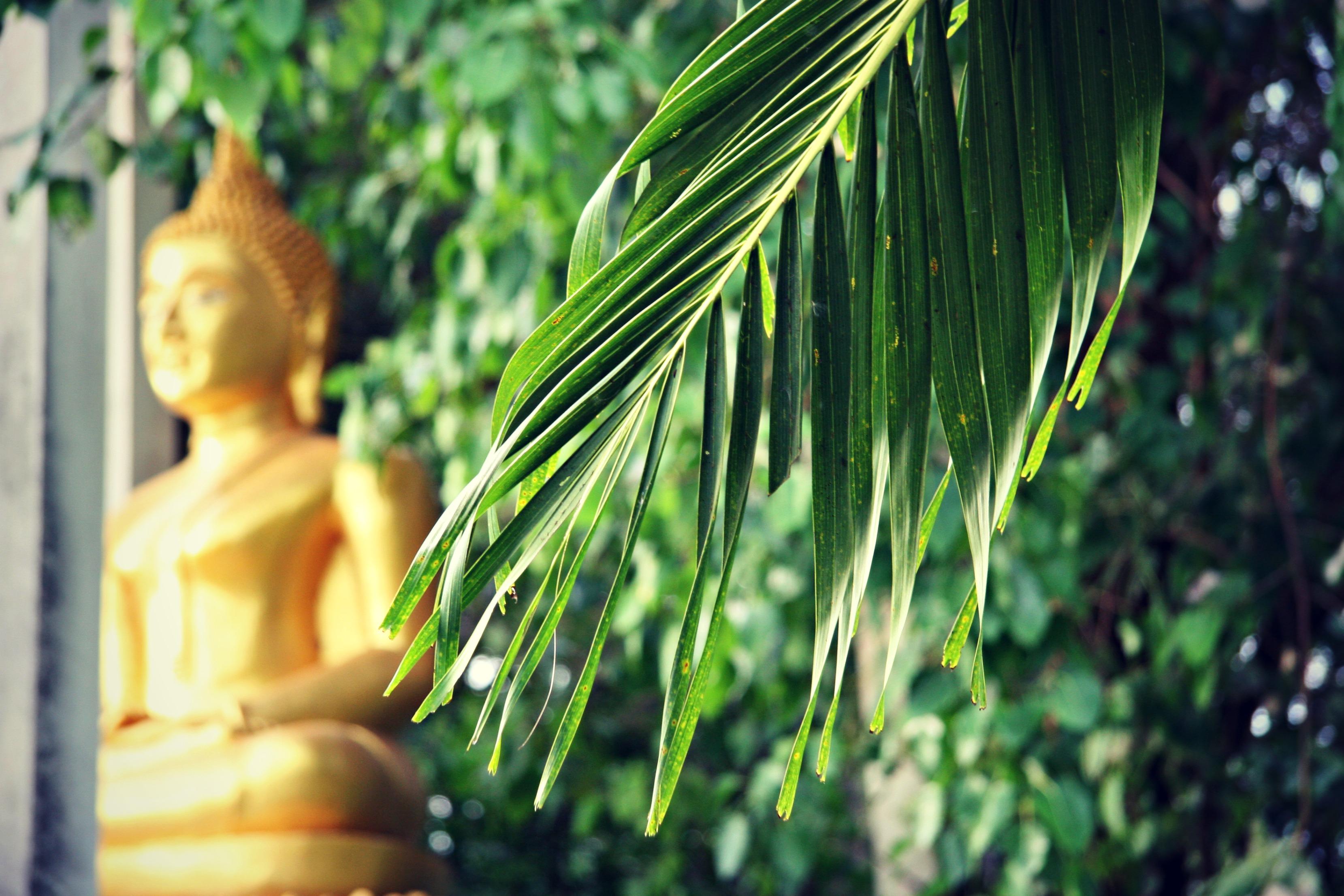 Koh Mak, Thailand