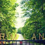 Andi's Pick: Primland