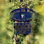 Andi's Pick: Banner Elk Winery & Villa