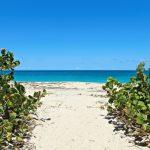 Nevis: Day 3 (Part 2)