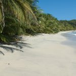 (Even More) Reasons To Visit Costa Rica: Walk On The Wild(life) Side