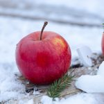 Best Tips To Follow For Healthy Winter