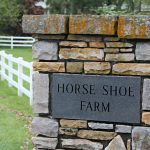 Andi's Pick: The Horse Shoe Farm