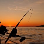 All You Need To Know About Deep Sea Fishing Charters In Clearwater, Florida