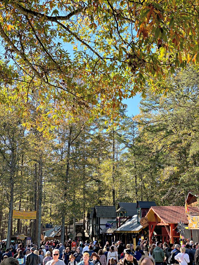 The Carolina Renaissance Festival