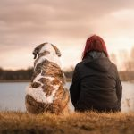 Role of Animals in Drug Addiction Recovery