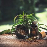 From vaping to ingesting, there are various methods of consuming CBD