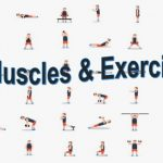 Five Exercises You Should Try Today
