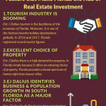 2020 Infographic by Eric J Dalius on  Enlightens Us about Some Factors that Make Florida the Hub of Real Estate Investment