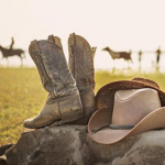 Know With What Styles Cowboy Boots Comes