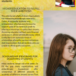 2020 Infographic by EJ Dalius explains why scholarships are so important for students