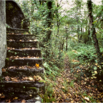 Staircases in the Woods: Check out these Horrifying Incidents