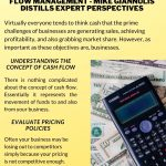 Getting on Top of Cash Flow Management – Mike Giannulis Distills Expert Perspectives