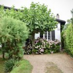 5 Benefits of a Wooden Garden Parasol and Why You Need One