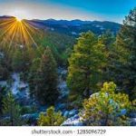 Guide for Moving to Evergreen Colorado