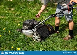Petrol Lawn