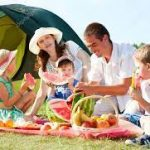 Why Do You Need To Plan A Perfect Family Picnic?