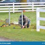 Some necessary equipment and tools for fence installation