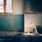 How To Get Rid Of Mold That Water Damage In Minneapolis Created