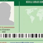 How To Get A Medical Marijuana Card in New Orleans