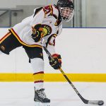 Three Things To Consider When Buying A Hockey Stick