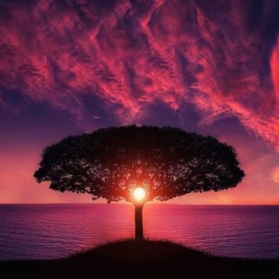 Uplifting-Image